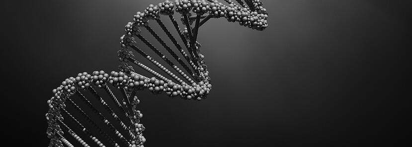 The DNA of a Survey