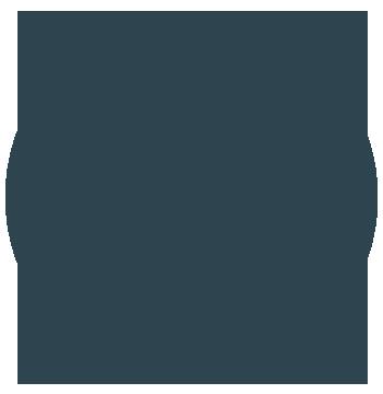 ICON_ car service